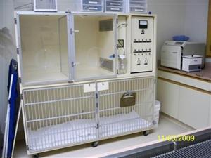 ICU (Oxygen Therapy)
